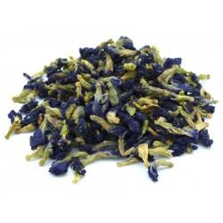Butterfly pea blauer Tee