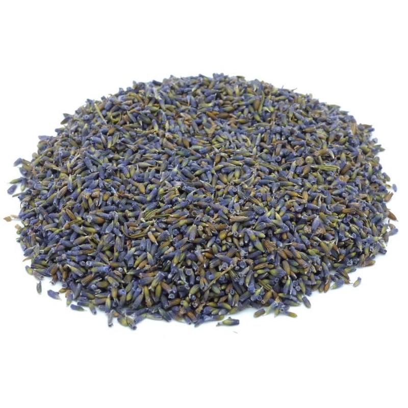 Lavendelblüten tiefblau